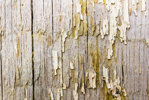 Dry Rot Damage Repair | Hometown Exterior Designs - Portland, OR & Vancouver, WA
